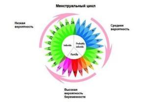 нерегулярный цикл