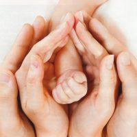 Имплантация эмбриона и беременность